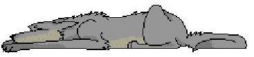 Snorestopper